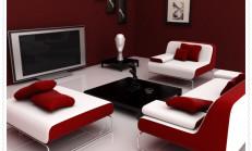 Kırmızı Beyaz Koltuk Modelleri