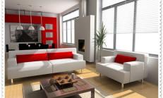 Kırmızı Beyaz Ev Dekorasyonu