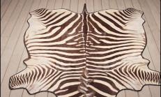 Zebra Halı Modelleri