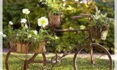 Bahçe Dekorasyonu İçin İp Uçları