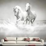 At Resimli Duvar Kağıdı