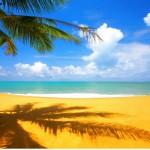 Deniz ve Kumsal Manzaralı Duvar Kağıdı