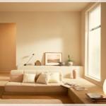 Lületaşı Rengi Oturma Odası