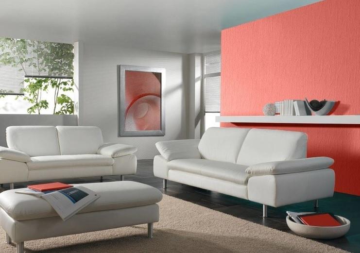 Somon Rengi Misafir Odası