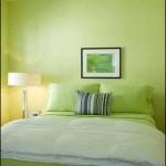Yeşil Renk Duvar Yatak Odası