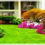 En Güzel Bahçe Dekorasyonları-4