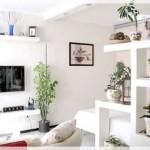 Küçük Salon Dekorasyonu Önerileri