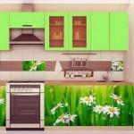 Papatya Resimli Mutfak Dolabı Kapakları