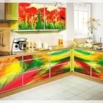 Renkli Mutfak Dolabı Kapakları