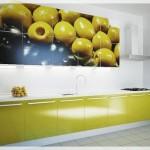 Resimli Mutfak Dolabı Kapakları