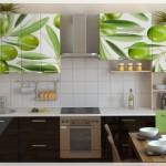 Resimli Mutfak Kapakları