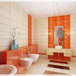 Renkli Banyo Fayansları