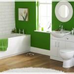 Yeşil Beyaz Banyolar