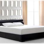 Siyah Deri Yatak Odası