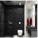 Siyah Beyaz Banyo Tasarımı