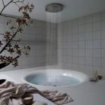 İlginç Banyolar