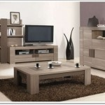 Oturma Odası Tasarımları-3