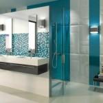 İki Renk Banyo Fayansları