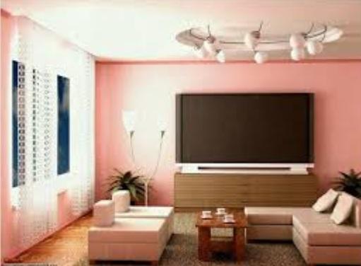 Salon Duvar Renkleri-12