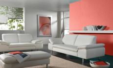 Somon Rengi Duvar Boyası