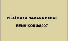 Havana Duvar Rengi