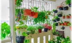 Çiçekli Balkon Dekorasyonu