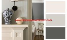 Kirli Beyaz Rengi Duvar Boyası