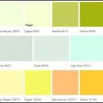 İç Cephe Duvar Boyası Renkleri-1