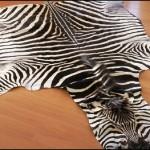 Zebra Halı Modeli-3