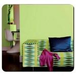 Salon Elma Yeşili Rengi