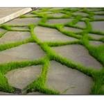 Bahçe Yürüyüş Yolu Modelleri
