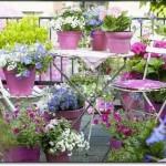 Balkon Dekorasyon Çiçekleri