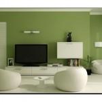 Salon Asker Yeşili Rengi