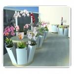 Balkon Dekorasyonu Ürünleri