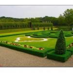 Park Bahçe Tasarımı