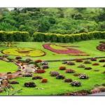 Park Bahçe Tasarımı-2